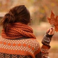 fall2b