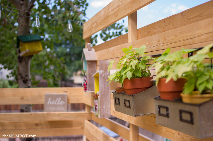 patio-renovation-fence-close-plants