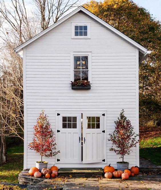 pumpkins-scattered-white-house